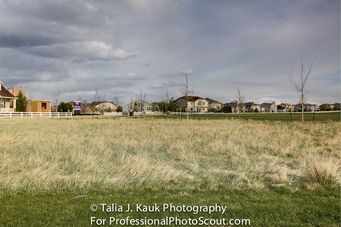 Homestead_Park_Aurora_CO_April_2014_9
