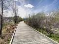 Hutchinson_Park_April_2014_11