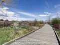 Hutchinson_Park_April_2014_13