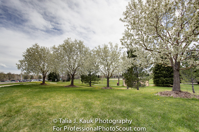 James_A_Bible_Park_April_2014_103