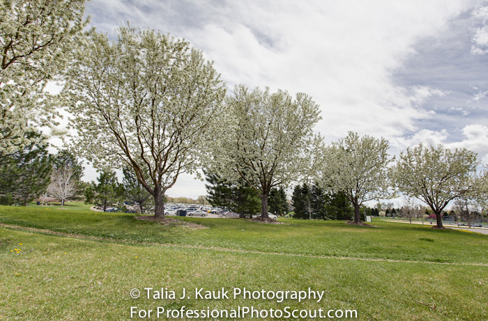 James_A_Bible_Park_April_2014_107