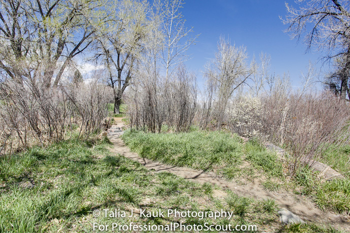 James_A_Bible_Park_April_2014_37