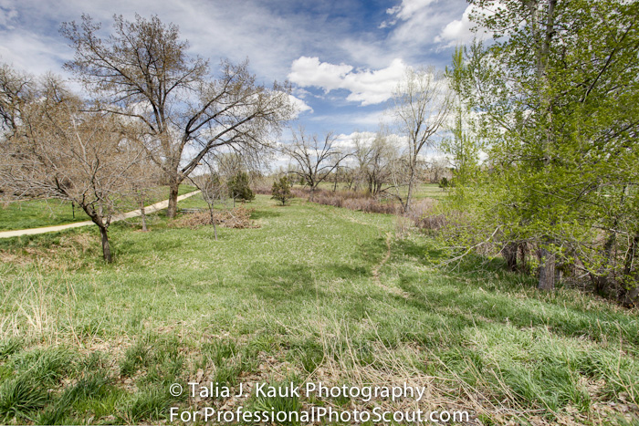 James_A_Bible_Park_April_2014_50