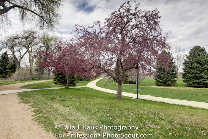James_A_Bible_Park_April_2014_72
