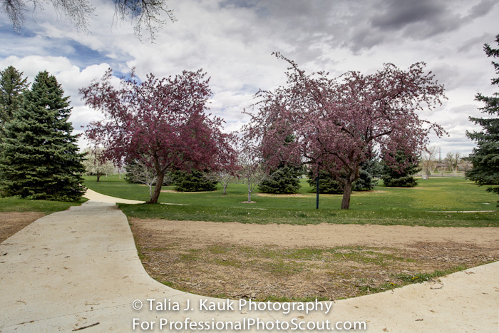 James_A_Bible_Park_April_2014_77