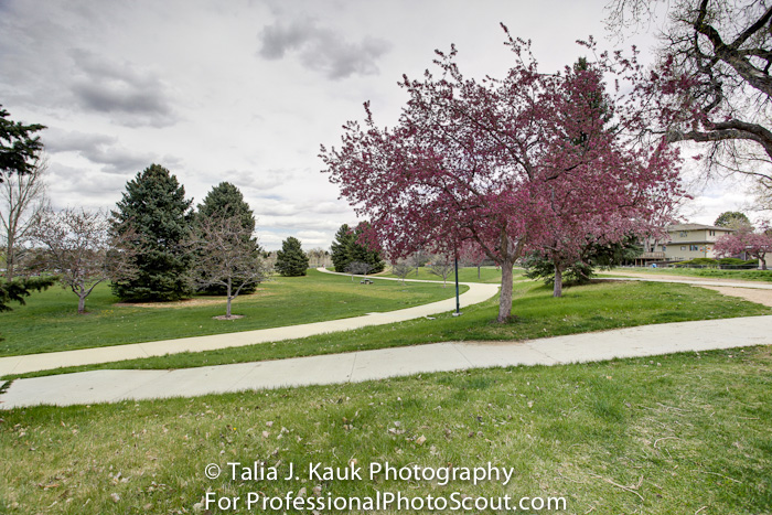 James_A_Bible_Park_April_2014_79