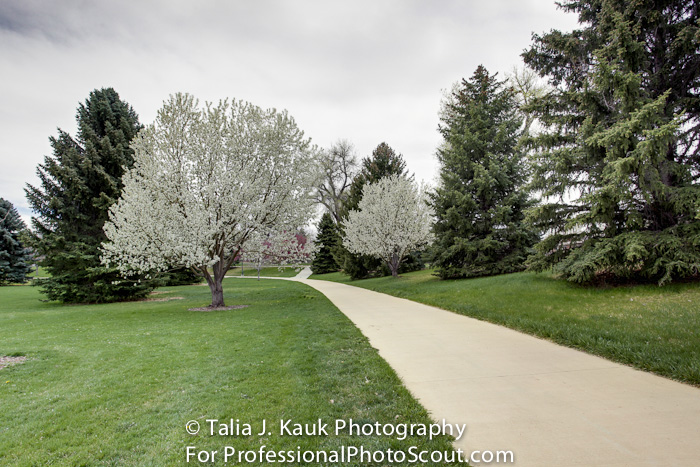 James_A_Bible_Park_April_2014_82