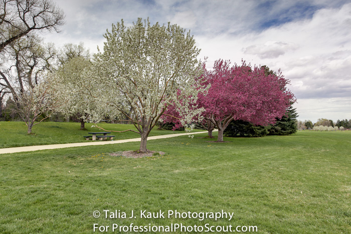 James_A_Bible_Park_April_2014_83
