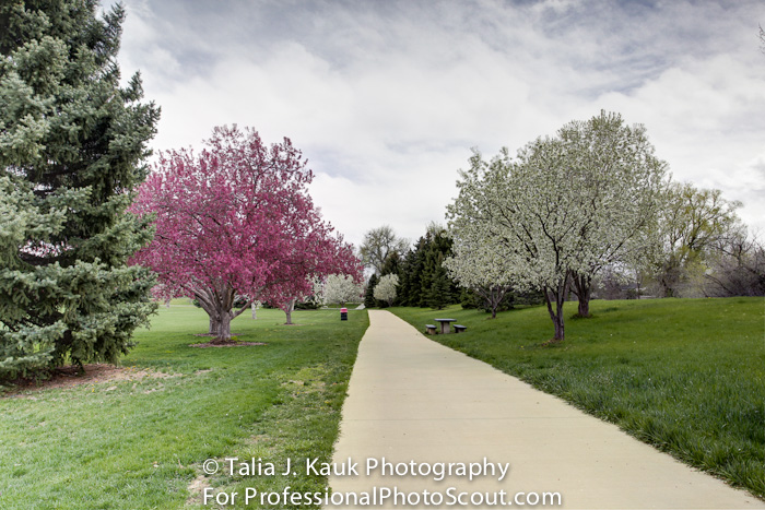 James_A_Bible_Park_April_2014_84