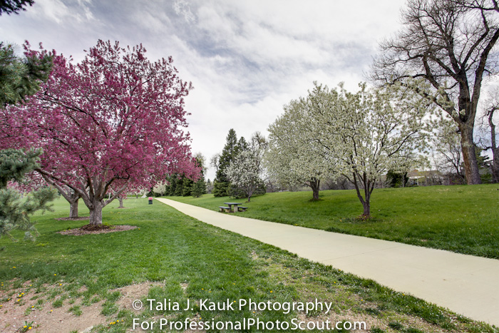 James_A_Bible_Park_April_2014_85