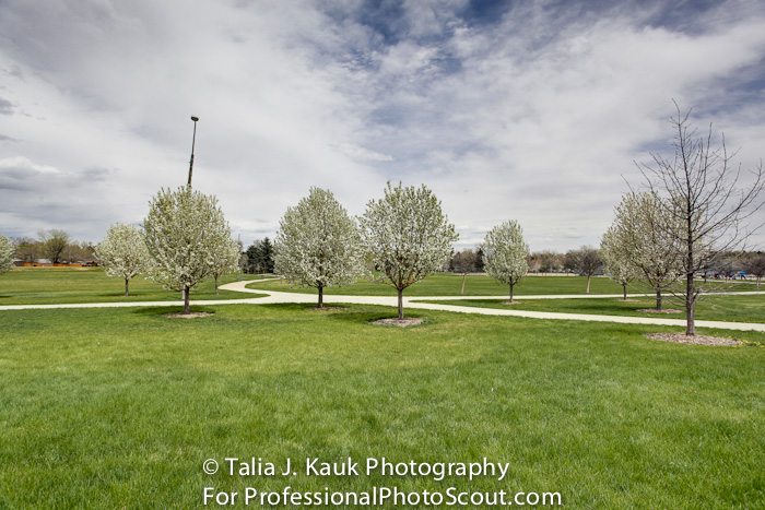 James_A_Bible_Park_April_2014_94