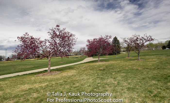 James_A_Bible_Park_April_2014_99