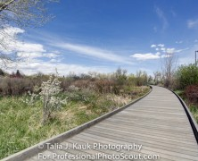 Hutchinson Park – Denver, CO