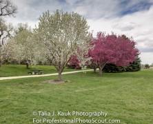 James A. Bible Park – Denver, CO